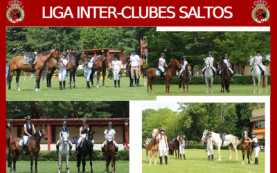 Jornada Final de la Liga Inter-Clubes de Saltos
