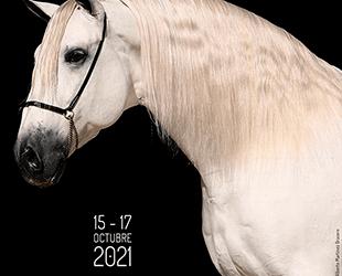 CONCURSO PRE (MORFOLÓGICO) CECYL 15 al 17 de octubre de 2021.